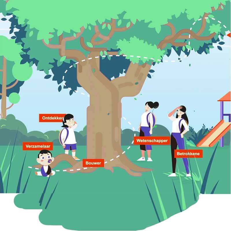 montessori-ontwikkelfases